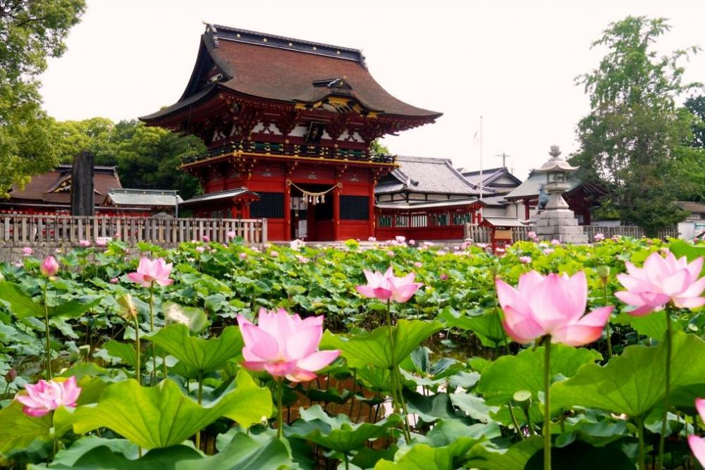 伊賀八幡宮|岡崎の観光スポット...