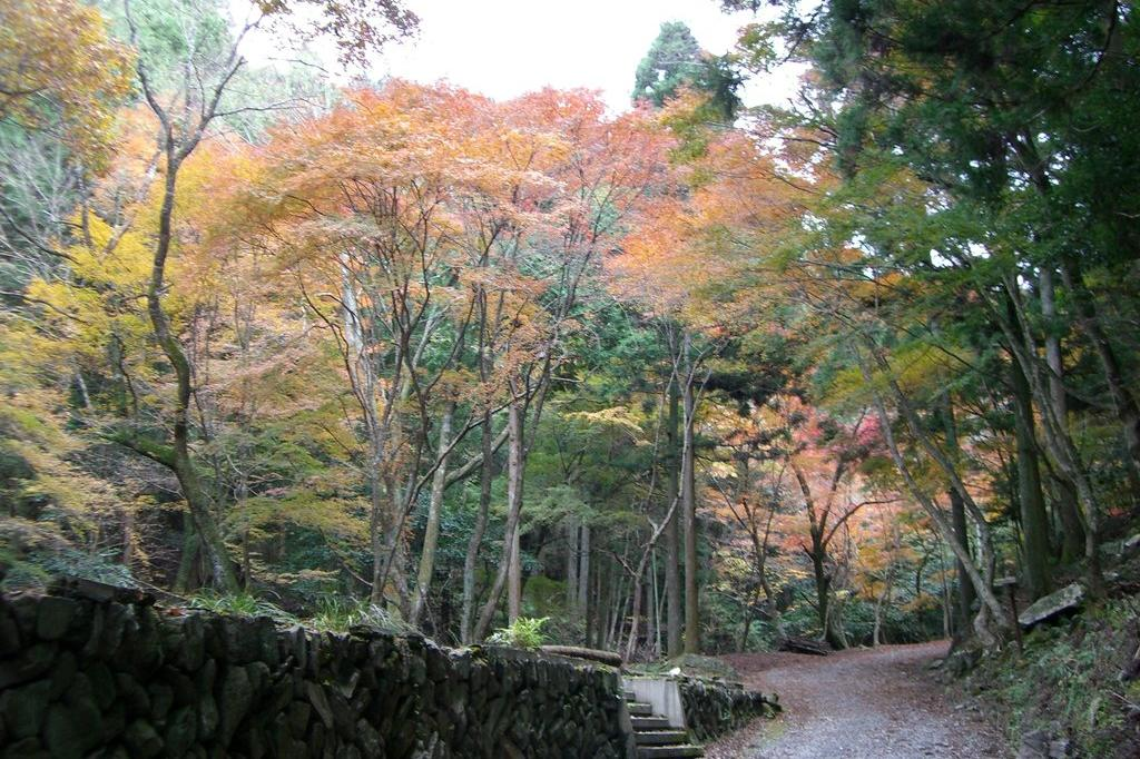 Wiki ゆっくり 八景