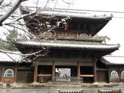 なんて風情がある大樹寺!雪の日で良かったです!